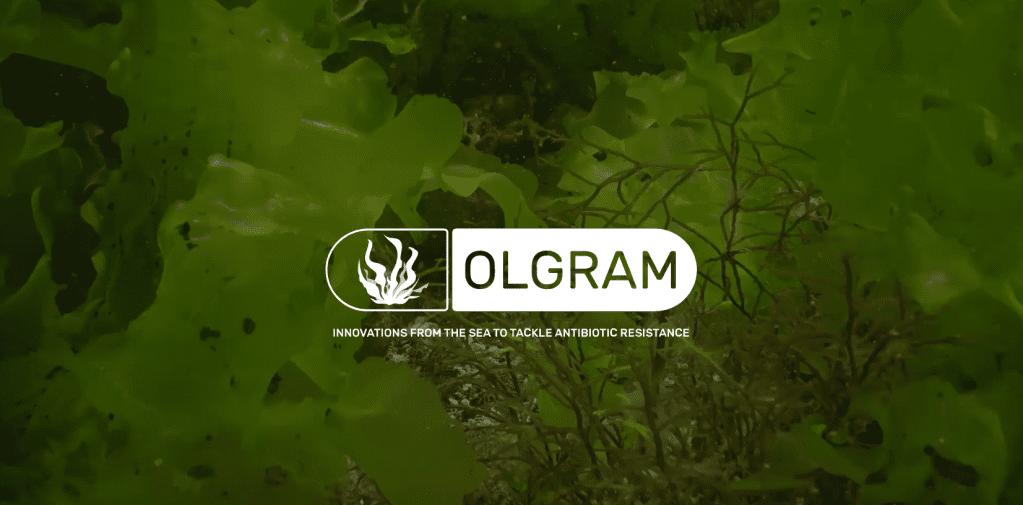 © Olgram