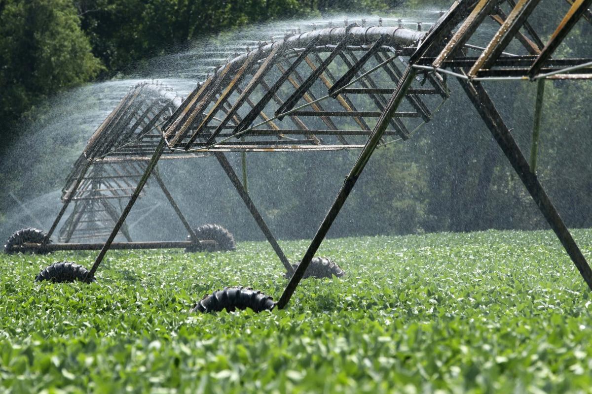 Magriser est leader marocain en micro-irrigation. © Magriser