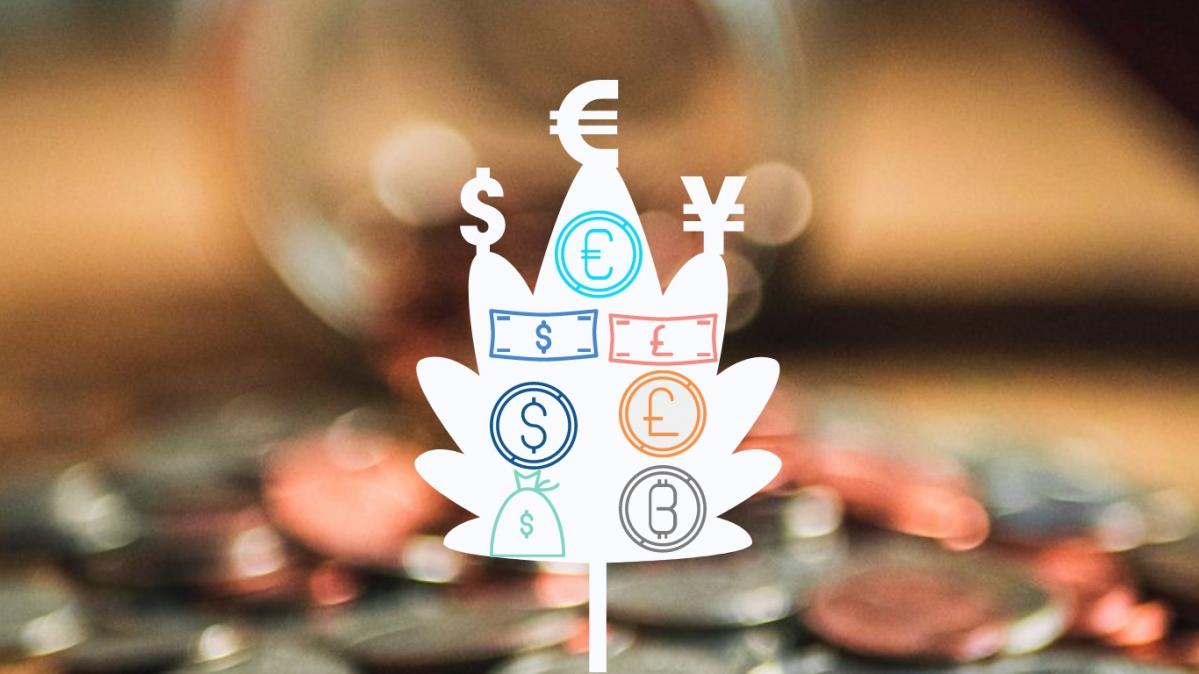Private Equity Arbre Monnaie