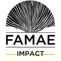 Famae Impact