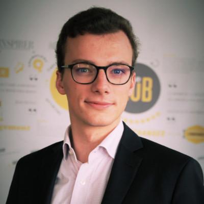 Augustin Chappelon, BPI Investissement